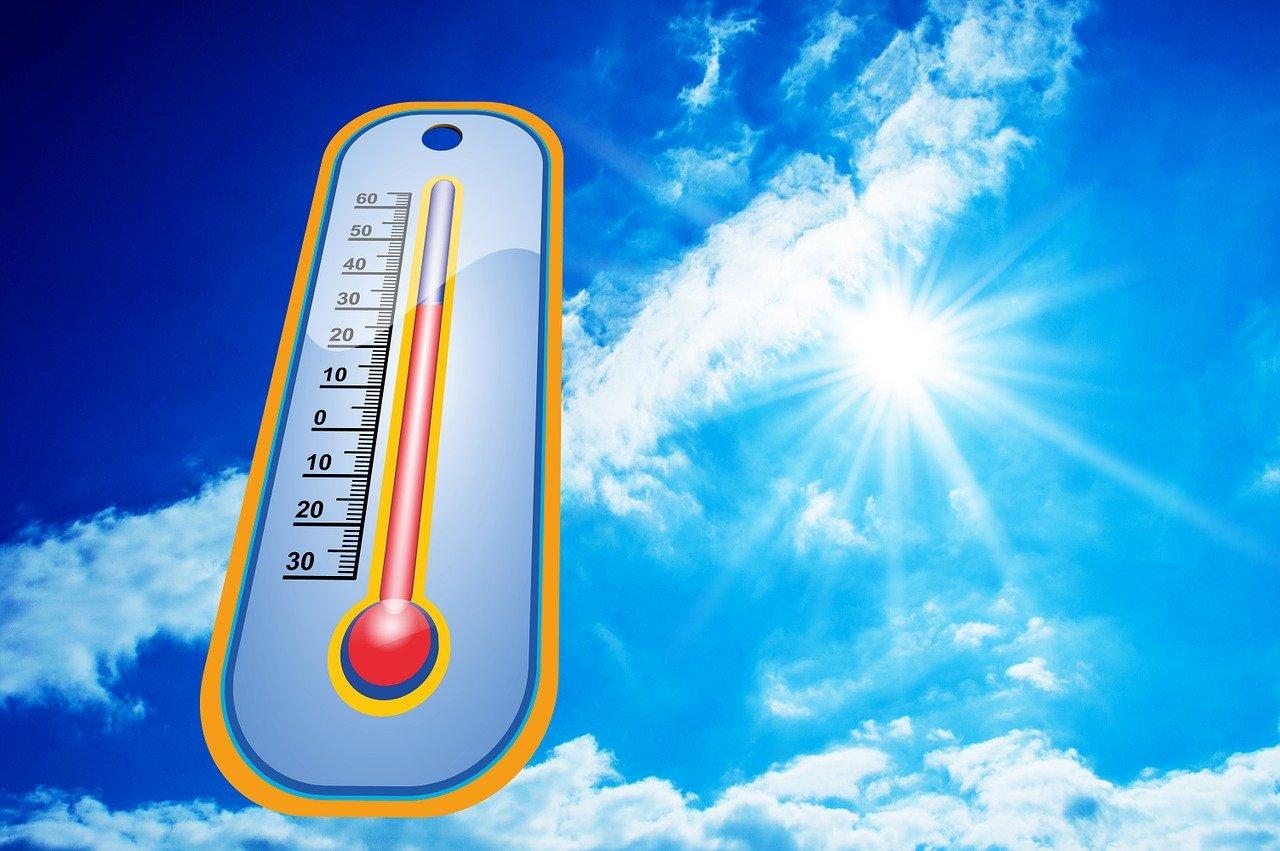 Alimentazione in estate: ecco i migliori cibi anti caldo