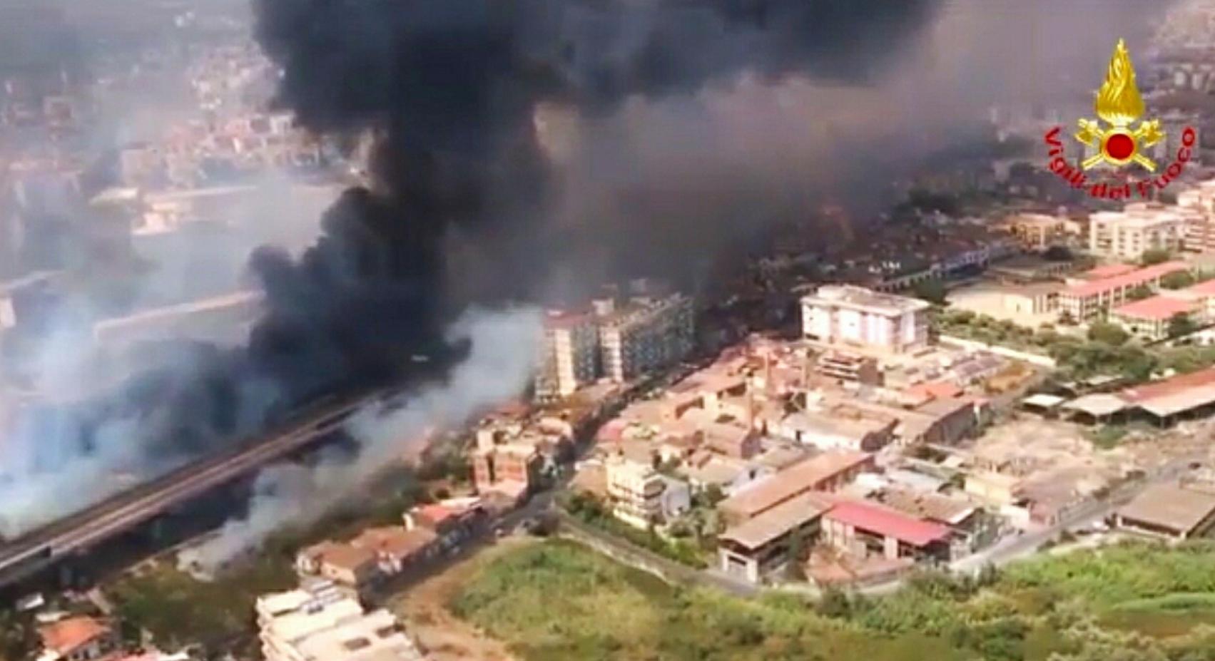 Incendi in Italia (ma non solo): ambiente e animali a rischio
